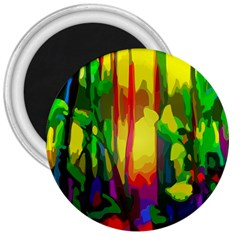 Abstract Vibrant Colour Botany 3  Magnets