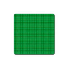 Pattern Green Background Lines Square Magnet