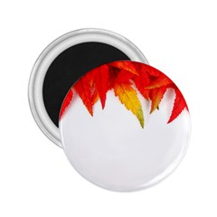 Abstract Autumn Background Bright 2.25  Magnets