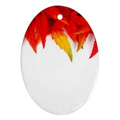 Abstract Autumn Background Bright Ornament (oval)