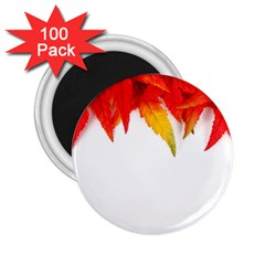 Abstract Autumn Background Bright 2 25  Magnets (100 Pack)