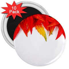 Abstract Autumn Background Bright 3  Magnets (10 pack)