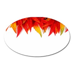 Abstract Autumn Background Bright Oval Magnet