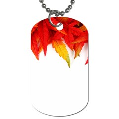 Abstract Autumn Background Bright Dog Tag (two Sides)