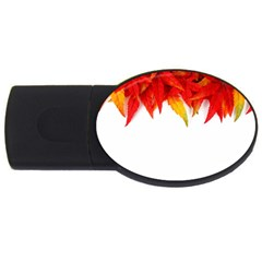 Abstract Autumn Background Bright USB Flash Drive Oval (4 GB)