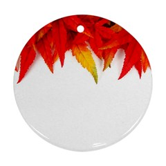 Abstract Autumn Background Bright Round Ornament (two Sides)