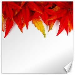 Abstract Autumn Background Bright Canvas 16  x 16