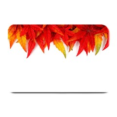 Abstract Autumn Background Bright Plate Mats