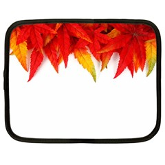 Abstract Autumn Background Bright Netbook Case (large)