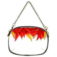 Abstract Autumn Background Bright Chain Purses (two Sides)