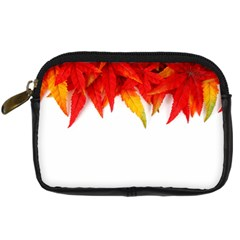 Abstract Autumn Background Bright Digital Camera Cases