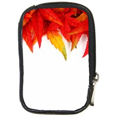 Abstract Autumn Background Bright Compact Camera Cases