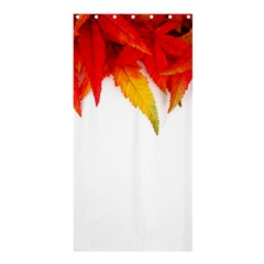 Abstract Autumn Background Bright Shower Curtain 36  x 72  (Stall)