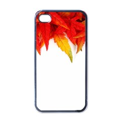 Abstract Autumn Background Bright Apple iPhone 4 Case (Black)