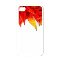 Abstract Autumn Background Bright Apple Iphone 4 Case (white)
