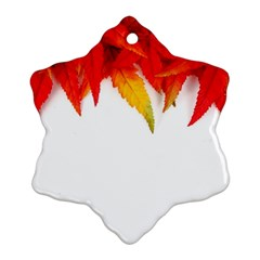 Abstract Autumn Background Bright Ornament (Snowflake)