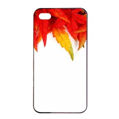 Abstract Autumn Background Bright Apple iPhone 4/4s Seamless Case (Black)