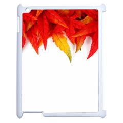 Abstract Autumn Background Bright Apple iPad 2 Case (White)