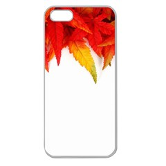 Abstract Autumn Background Bright Apple Seamless iPhone 5 Case (Clear)