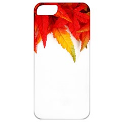 Abstract Autumn Background Bright Apple iPhone 5 Classic Hardshell Case