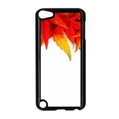 Abstract Autumn Background Bright Apple iPod Touch 5 Case (Black)