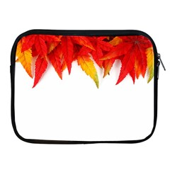 Abstract Autumn Background Bright Apple iPad 2/3/4 Zipper Cases