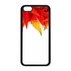 Abstract Autumn Background Bright Apple iPhone 5C Seamless Case (Black)