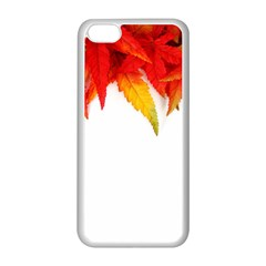 Abstract Autumn Background Bright Apple Iphone 5c Seamless Case (white)