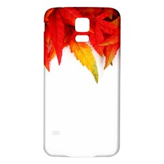 Abstract Autumn Background Bright Samsung Galaxy S5 Back Case (White)