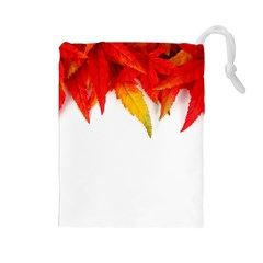 Abstract Autumn Background Bright Drawstring Pouches (large)