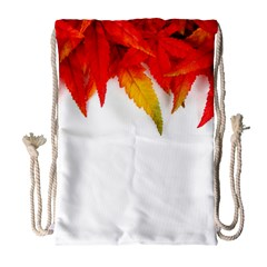 Abstract Autumn Background Bright Drawstring Bag (Large)