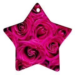 Pink Roses Roses Background Ornament (Star)