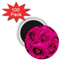 Pink Roses Roses Background 1 75  Magnets (100 Pack)