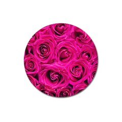 Pink Roses Roses Background Magnet 3  (round)