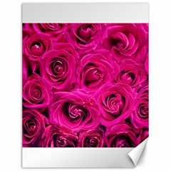 Pink Roses Roses Background Canvas 12  X 16