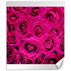 Pink Roses Roses Background Canvas 20  X 24