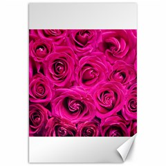 Pink Roses Roses Background Canvas 20  x 30