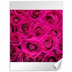 Pink Roses Roses Background Canvas 36  x 48
