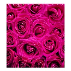 Pink Roses Roses Background Shower Curtain 66  x 72  (Large)