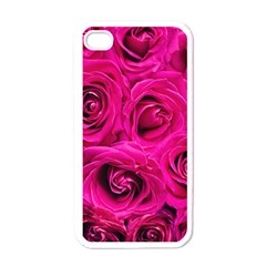 Pink Roses Roses Background Apple Iphone 4 Case (white)