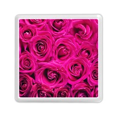 Pink Roses Roses Background Memory Card Reader (square)