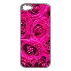 Pink Roses Roses Background Apple Iphone 5 Case (silver)