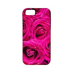 Pink Roses Roses Background Apple Iphone 5 Classic Hardshell Case (pc+silicone)