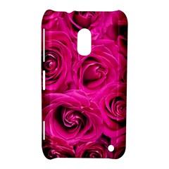 Pink Roses Roses Background Nokia Lumia 620