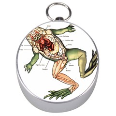 Disected Frog Cutting Board Silver Compasses