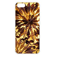Mussels Lamp Star Pattern Apple Iphone 5 Seamless Case (white)