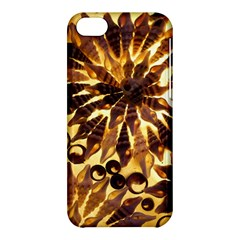 Mussels Lamp Star Pattern Apple iPhone 5C Hardshell Case
