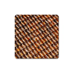 Dirty Pattern Roof Texture Square Magnet