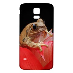 Frog In Red Flower Samsung Galaxy S5 Back Case (White)