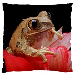 Frog In Red Flower Large Flano Cushion Case (Two Sides)